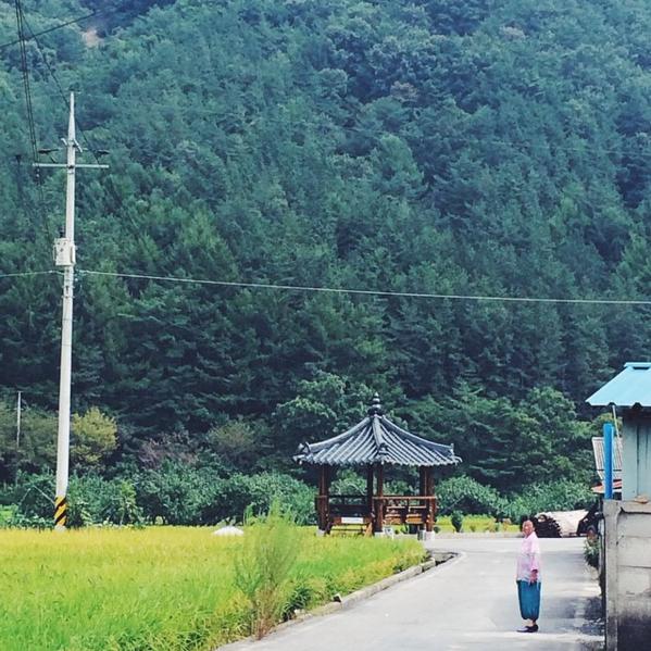 Yangsan, Korea   Sept 2014
