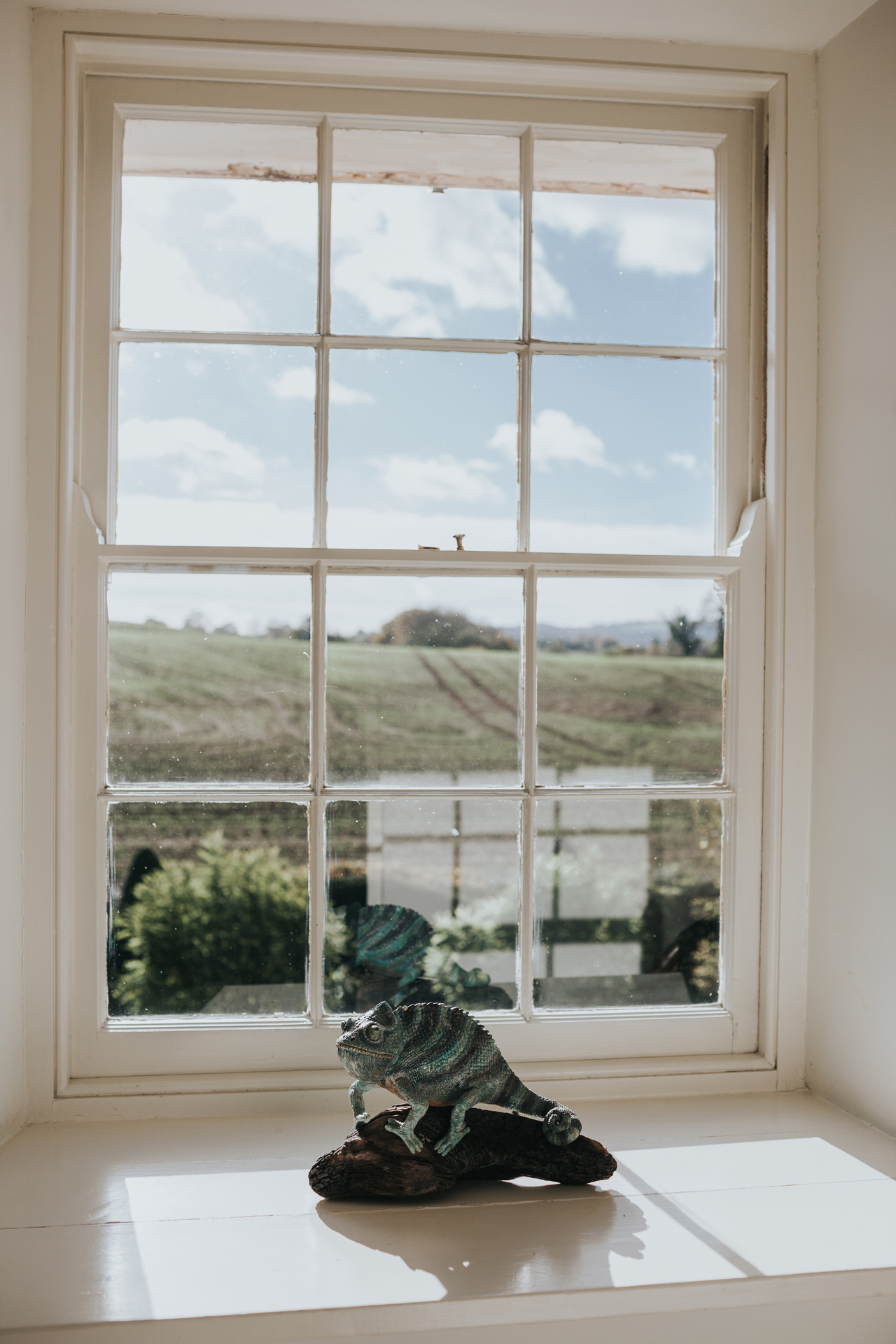 A window with a view over Callow with a Chameleon.