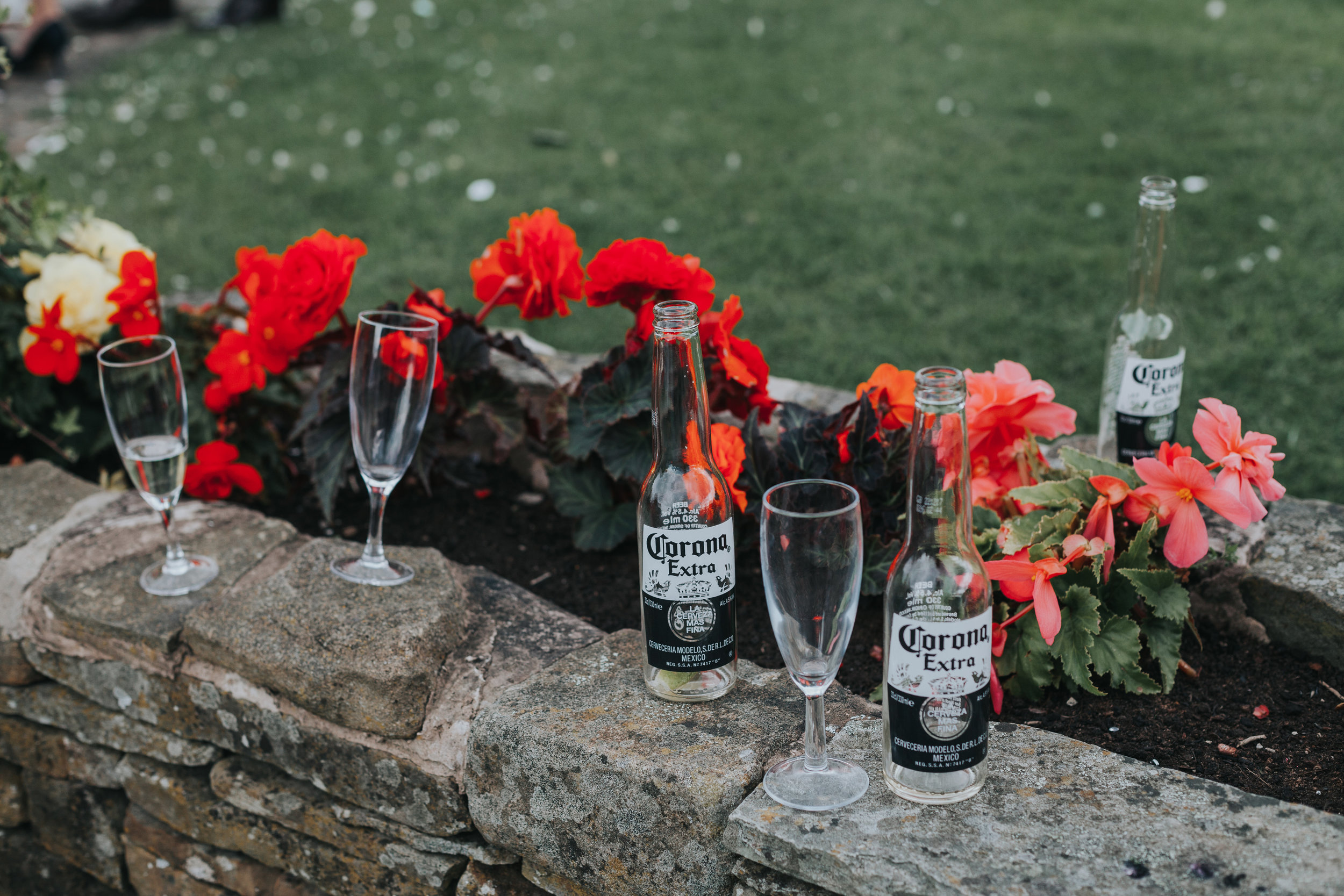 Empty beer bottles and champagne flutes are left in the flower bed. Red flowers.