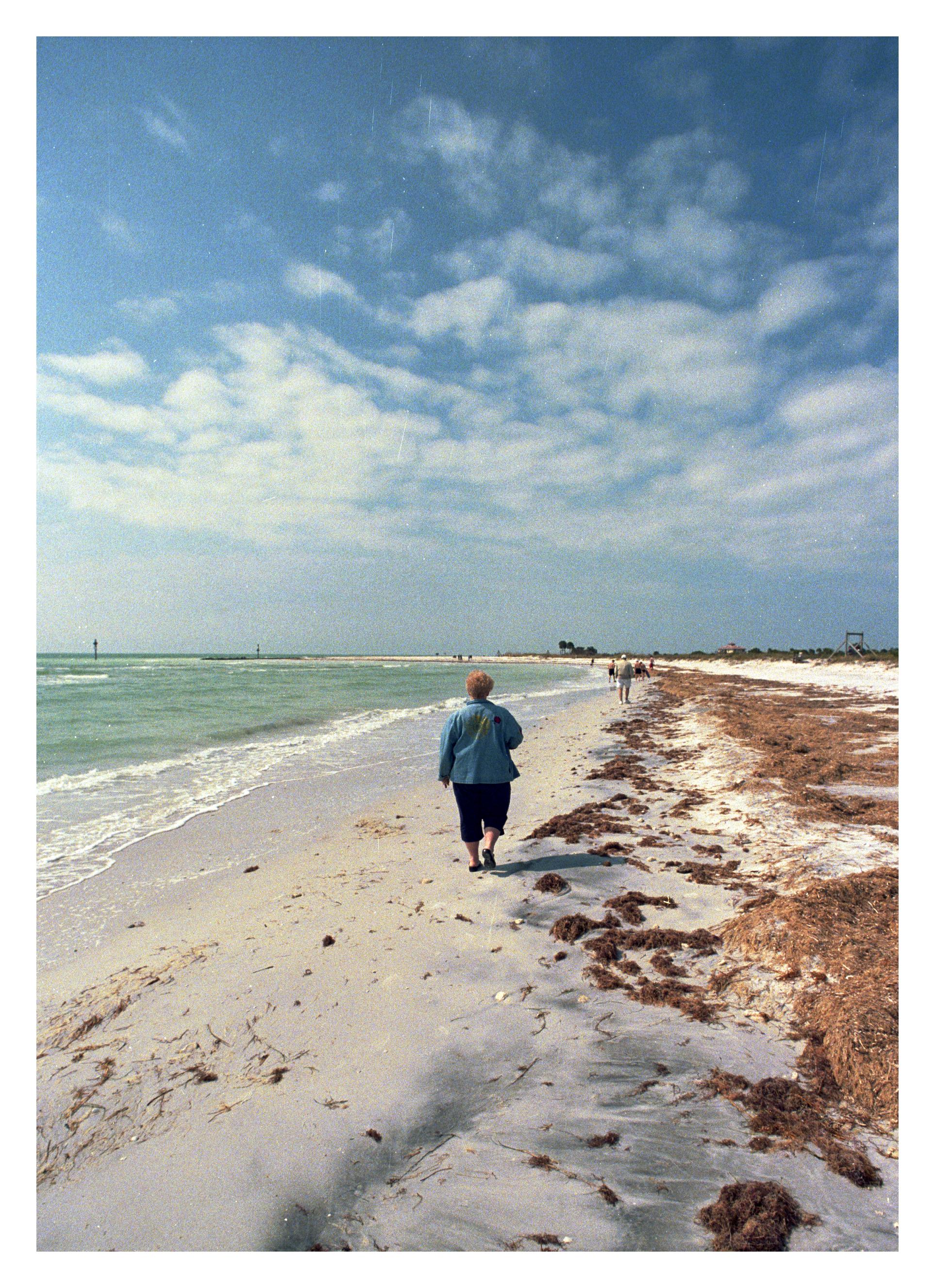 beachlady.jpg