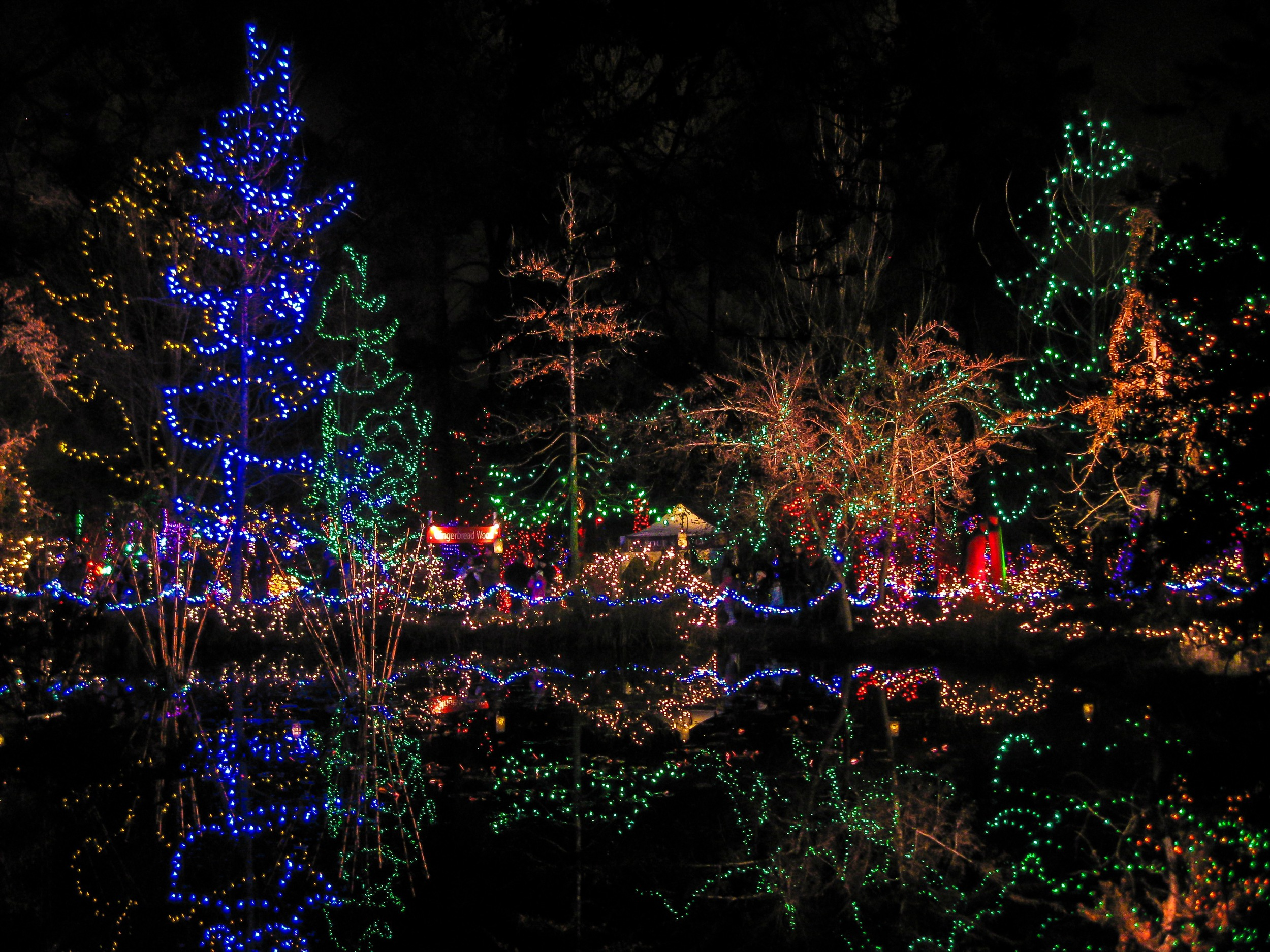 Festival of Lights at Van Dusen Botanical Gardens