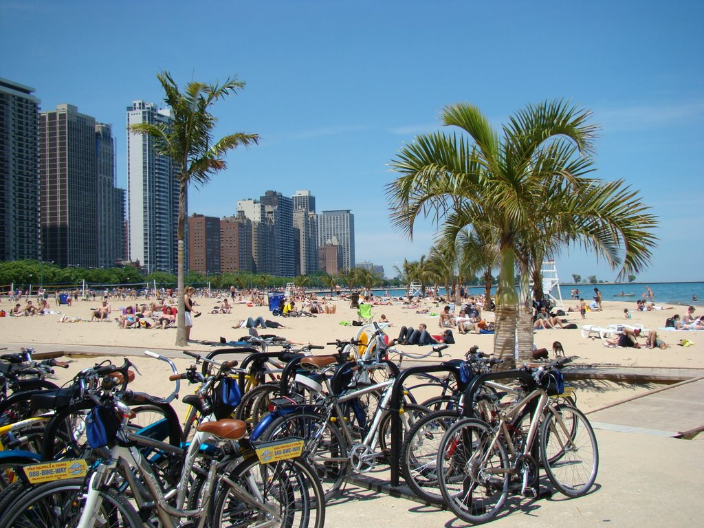 Lakefront path in Chicago has the calmness, scenery and water elements of a great bike ride.