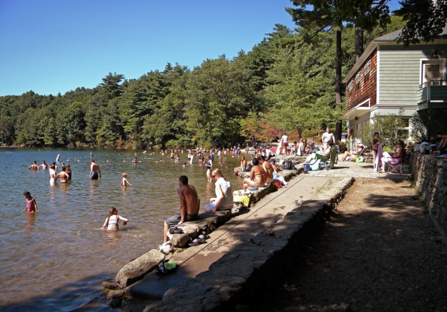 Walden Pond, aka great swimming hole