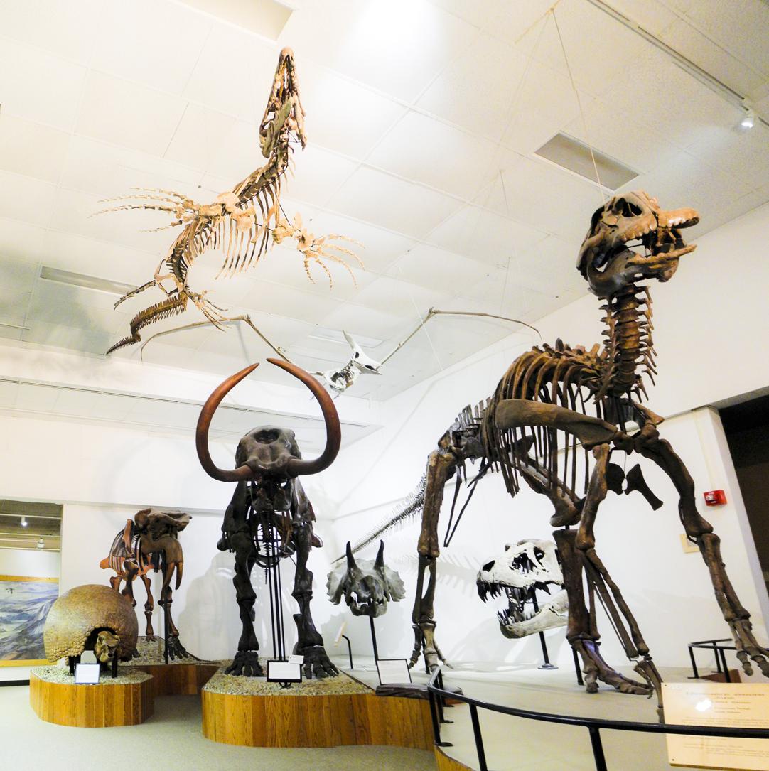 UW-Madison Geology Museum