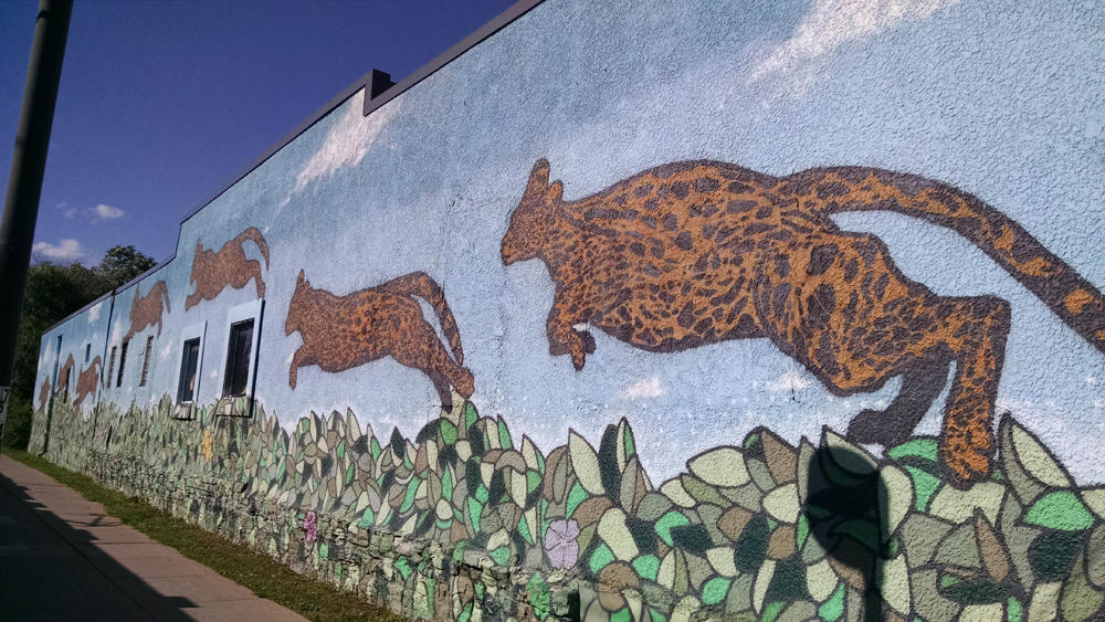 Broken Crow's Serval Mural alongside the light rail and Hiawatha Trail.