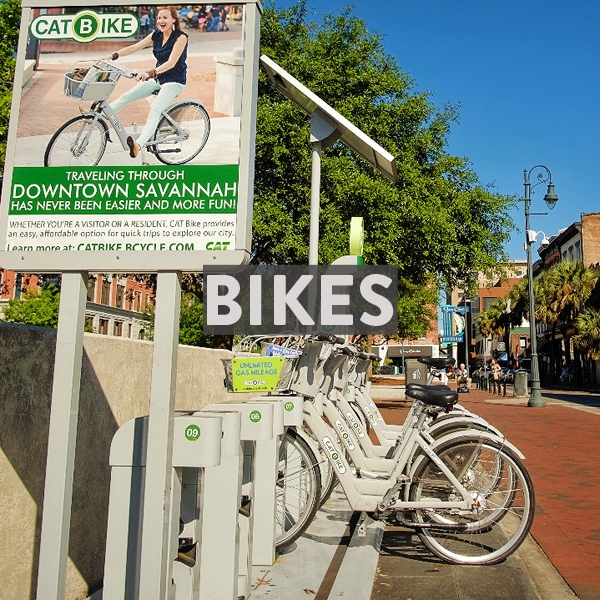 Bike rentals, tours and local bike shops