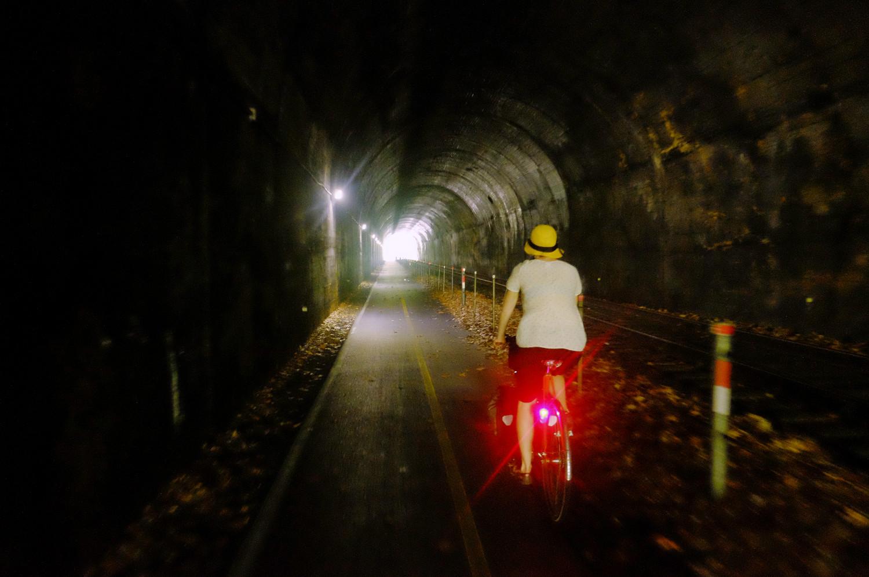 Brush Tunnel