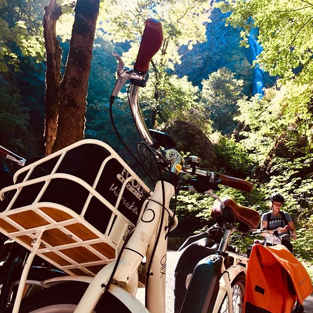 I got to lead an #ebike 🚲 tour of waterfalls 💦 and the brand new section of the @hcrhighway trail featuring an amazing viaduct and bench cut. I think the #apbp (walking-biking-transit nerds 🤓) were grateful for a day out of conference rooms and in nature. There's nothing like learning through shared experiences. Thanks to @sol_rides fir providing a great fleet of @blixbike and @oregon_dot for helping coordinate the tour with @grayline_sightseeing! #apbp2019 #urbanplanning #ebikesarecheating #ebikes #blixbike #waterfall #starvationcreek