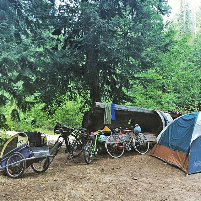 Family bike camping 🚲⛺️ doesn't have to be hard with an ⚡️ #ebike. The usual set up is the @pedego pulling the @burleydesign piccolo pulling the burley trailer with gear and the other person riding whatever they want carrying 2 panniers. #ebikesarecheating #camping #bikecamping . . . Tag @bikabout on socials and we'll share your ebike story. Instagram link to bikabout.com/blog showcasing all the amazing adventures and everyday life stuff that these ⚡️😀 machines have a hand in. . . . #ihavethisthingwithbikes #bikeride  #wanderbybike #bikelife #biketravel #biketour #cycling #biking #cyclinglife #cyclingtour #biketourism #familytravel #travelphotography #familybikeride #pedego #ecargobike #electricbike #electricbikes #burleytrailer #bikaboutoregon
