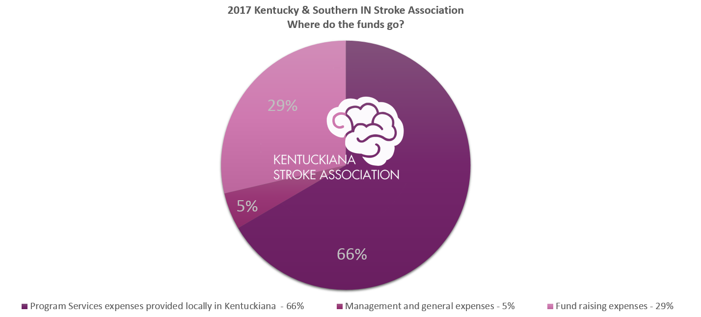 2017_pie_chart_funds_strokeassociation.PNG