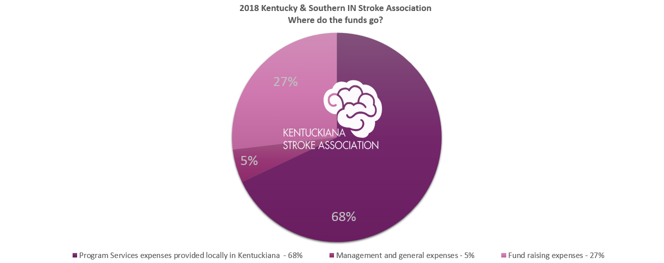 annual report pic chart stroke association2018.PNG