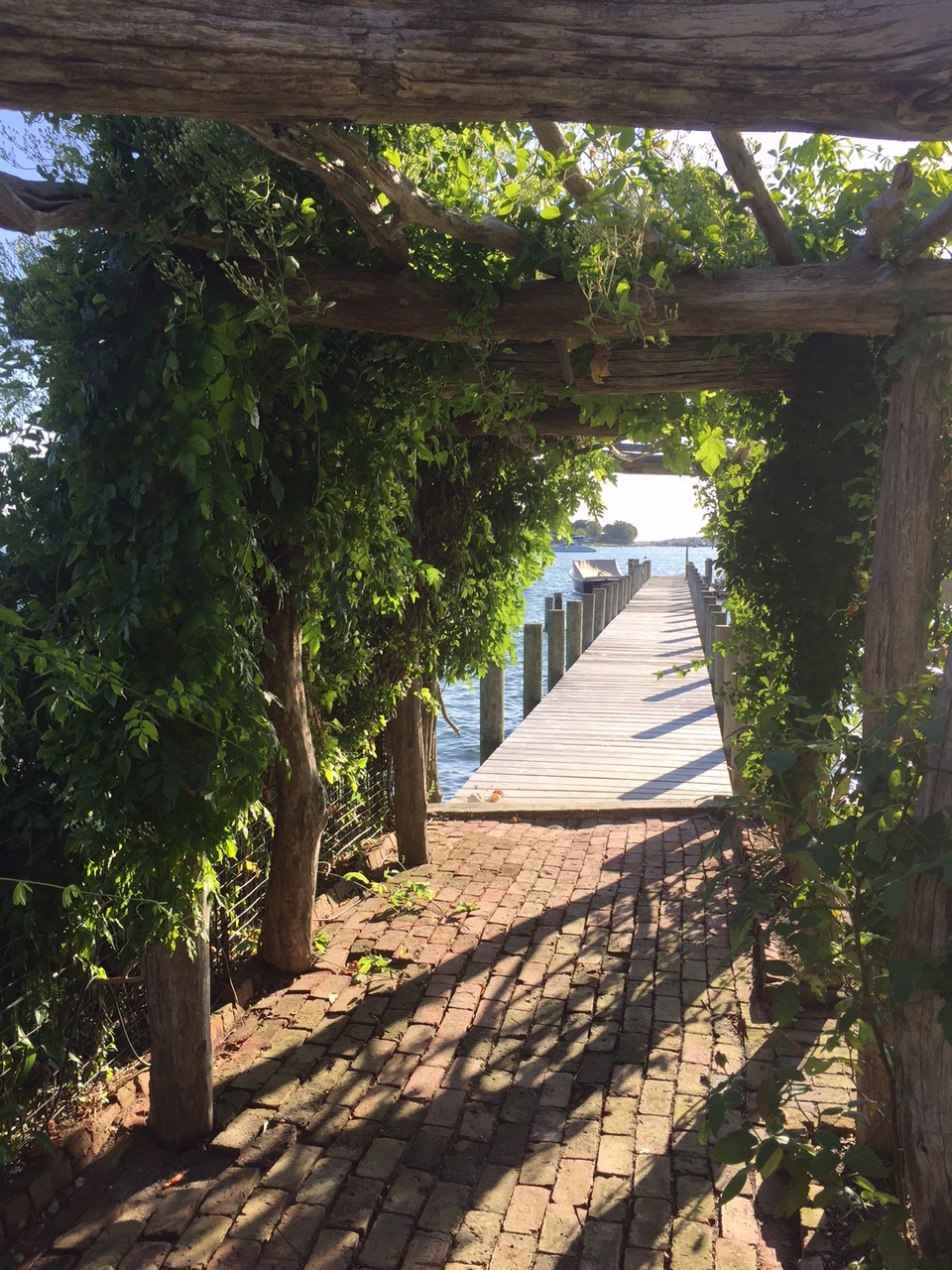 Once through the gate, the long view out the dock to the boat. The arbor is an extension of the main axis to the dock and also is a sculptural element in the garden, now partially covered with the flowing Trumpet vine, and also Akebia (or Chocolate vine) which both provides some shade and also softens the structure.