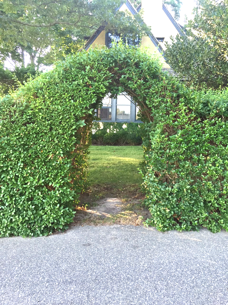 A small arched side entry is carved out of a dense hedgerow of Privet.