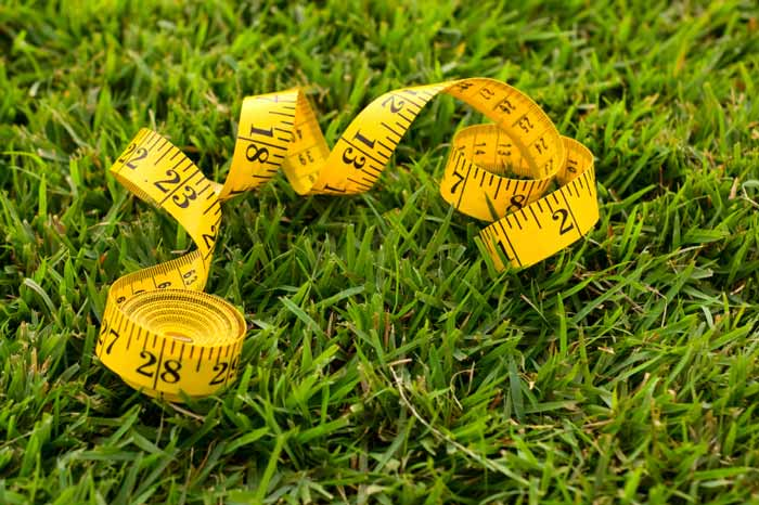 It's simple math, and sometimes you have to do it. Measure the length and width of your site, and multiply them to get the area of your site. Double the amount of seed if you want a dense meadow, but careful not to overseed.
