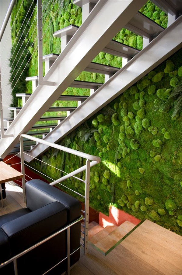 AWESOME CONCEPT:PRESERVED MOSS  Its concept re-interprets the 'green wall' by using essentially what are naturally preserved (eh hem, 'dead)' plants. This is a pretty great idea, considering vertical green walls are costly, and the opposite of 'green' in that they need a lot of water, maintenance, time, and money. They use naturally preserved plants, guaranteed for up to five years, and this system does not require water, soil, or sun.   View Product Website