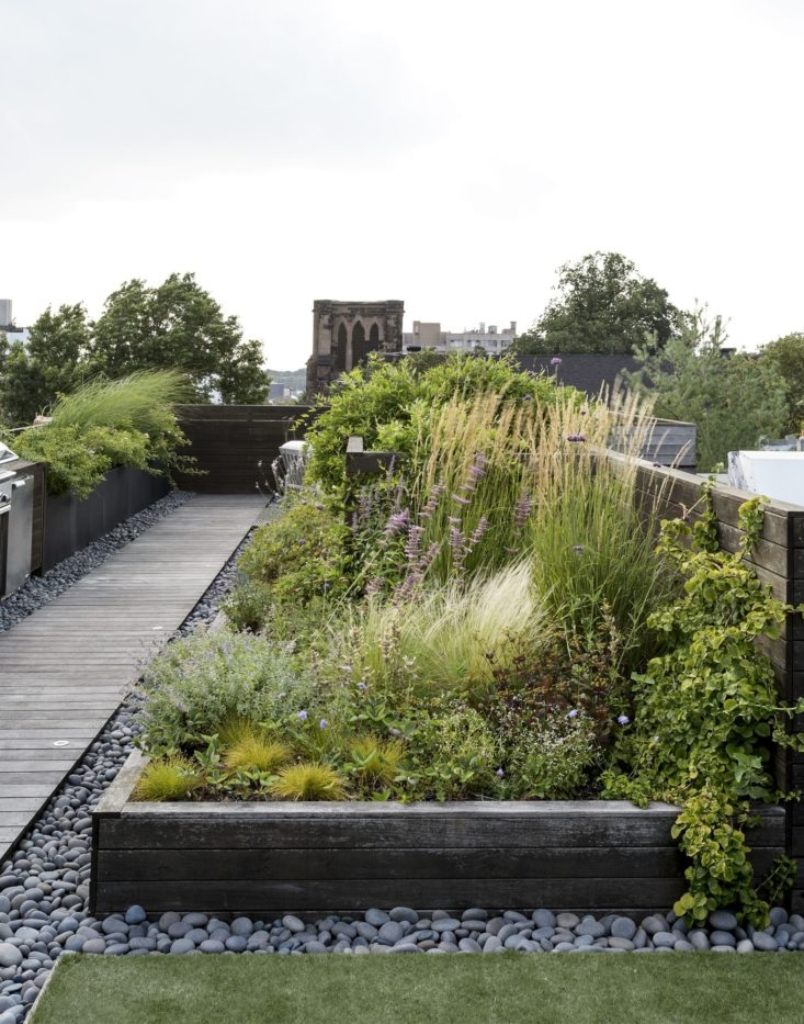 roof-garden-brooklyn-julie-farris-matthew-williams-dsc-6362-733x933 (2).jpg