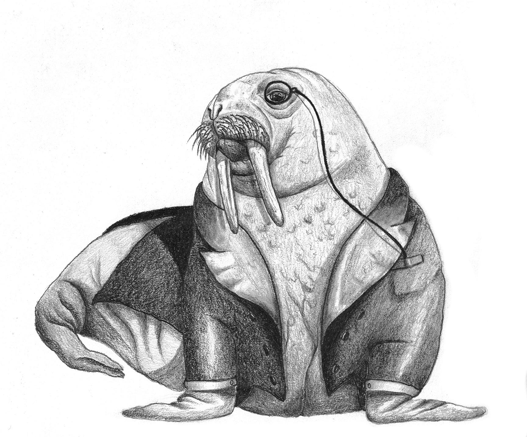 Walrus by LK Weiss