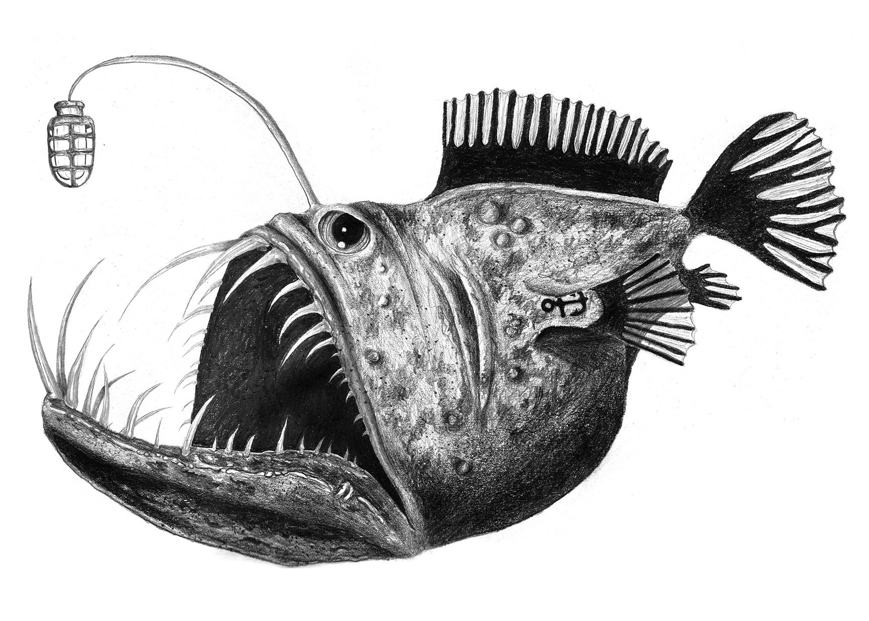 BC.Angler.Final.web.jpg