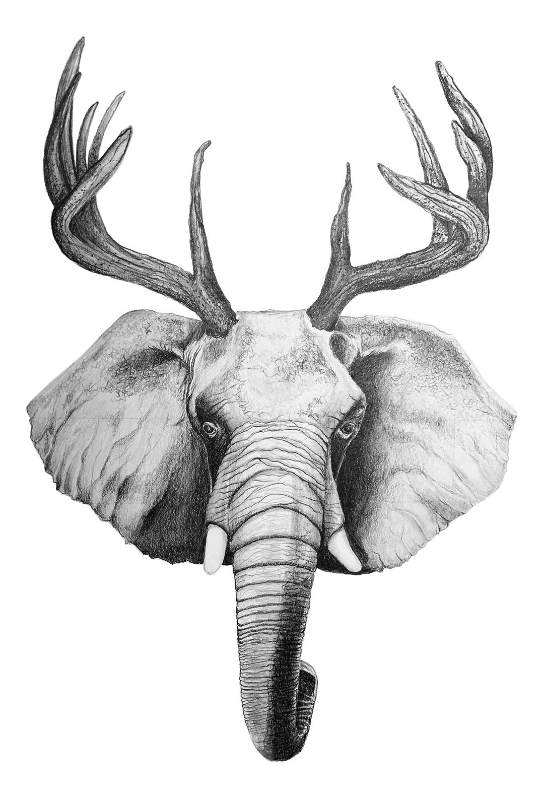Elk/Elephant by LK Weiss