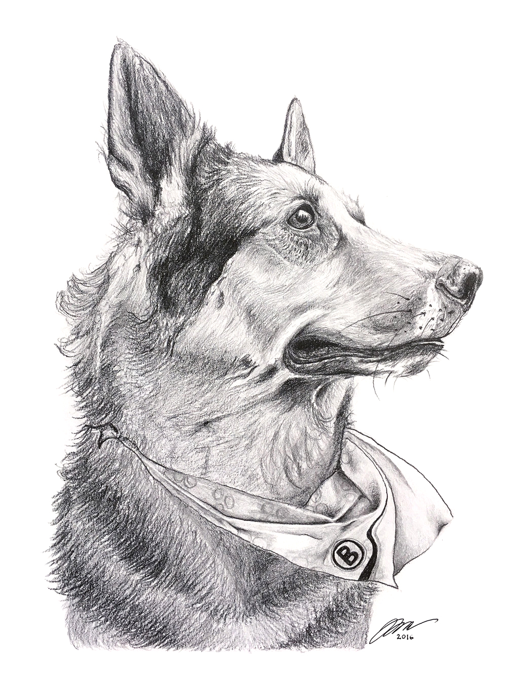 German Shepherd by LK Weiss
