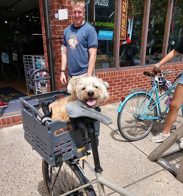 Pup in a basket! . . @iamspecialized @ridecannondale  @giantbicycles  @santacruzbicycles  @puppiesofpennstate  @psupets  #puppy #bicycle #dog #bike #psu #pennstate #statecollege #happyvalley