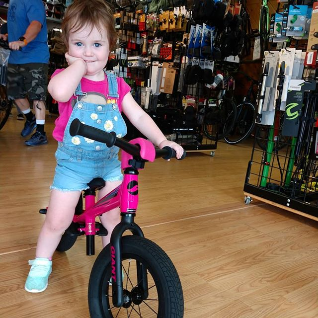 Amelia melted our hearts today! ♥️♥️♥️♥️♥️♥️♥️♥️♥️♥️♥️ . . @giantbicycles  #kidsonbikes #kidsbike #striderbike #cute #supercute #bike #bicycle #statecollege #psu#pennstate #happyvalley