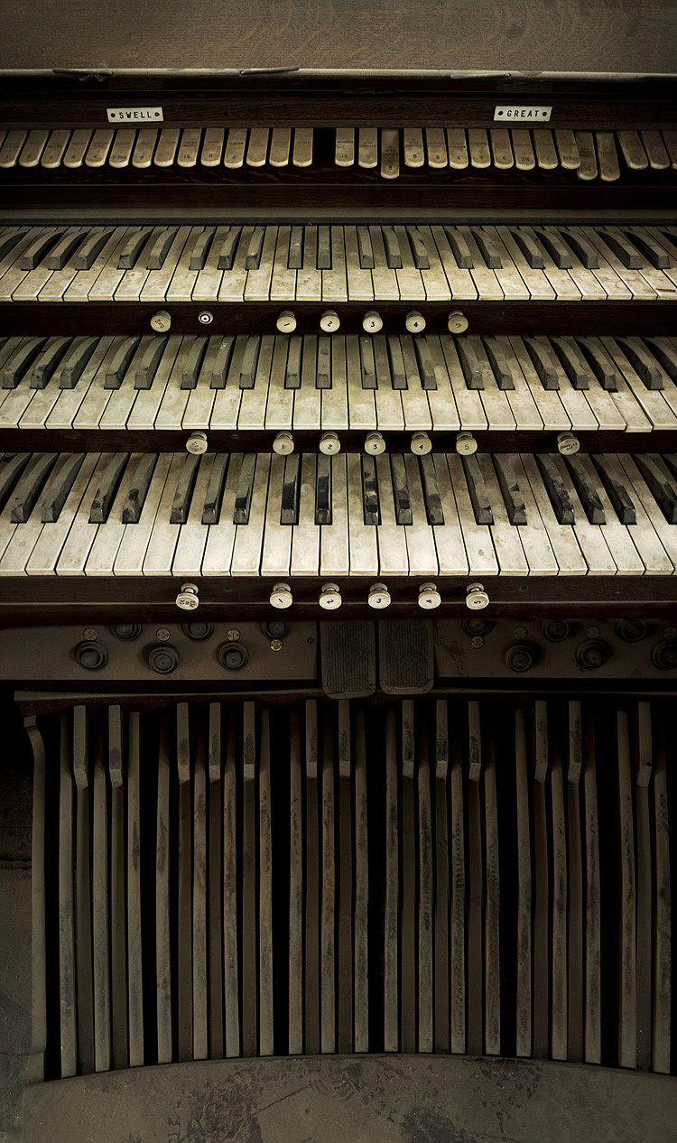 albert hall organ