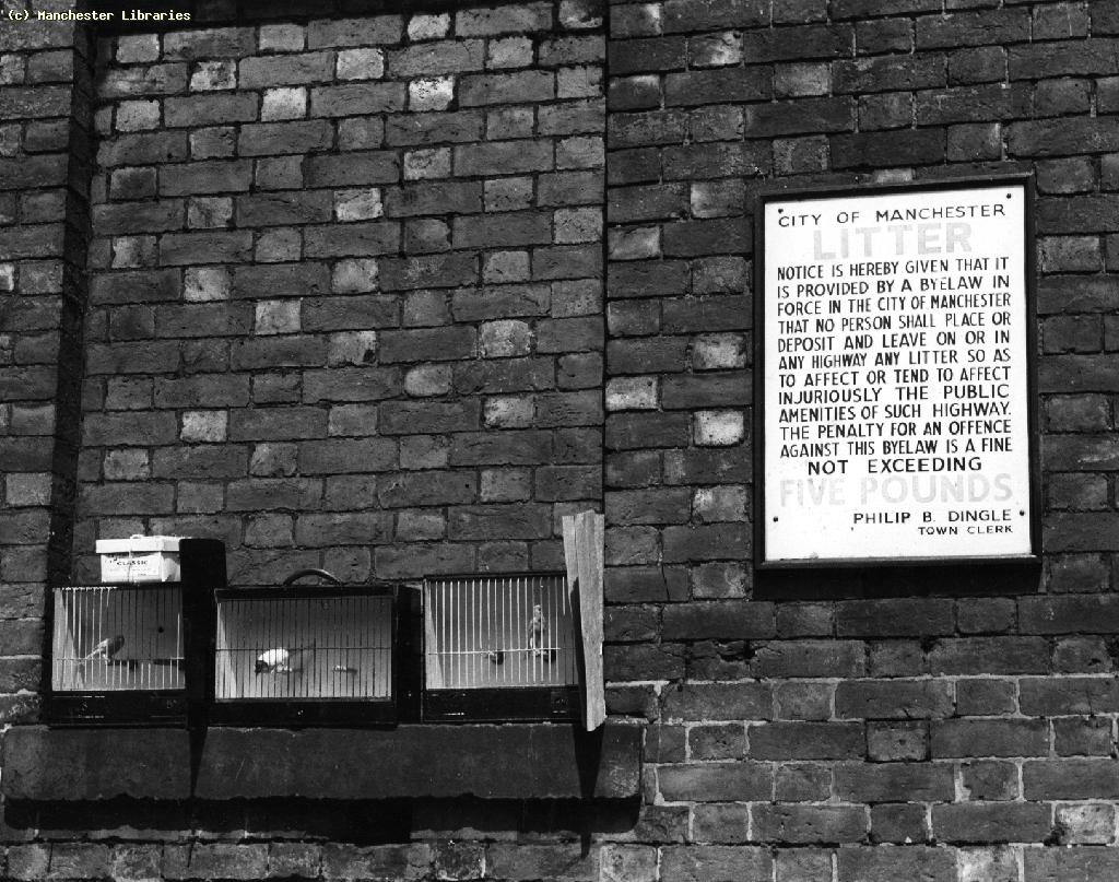 Image c/o  Manchester Libraries , Tib Street, 1959