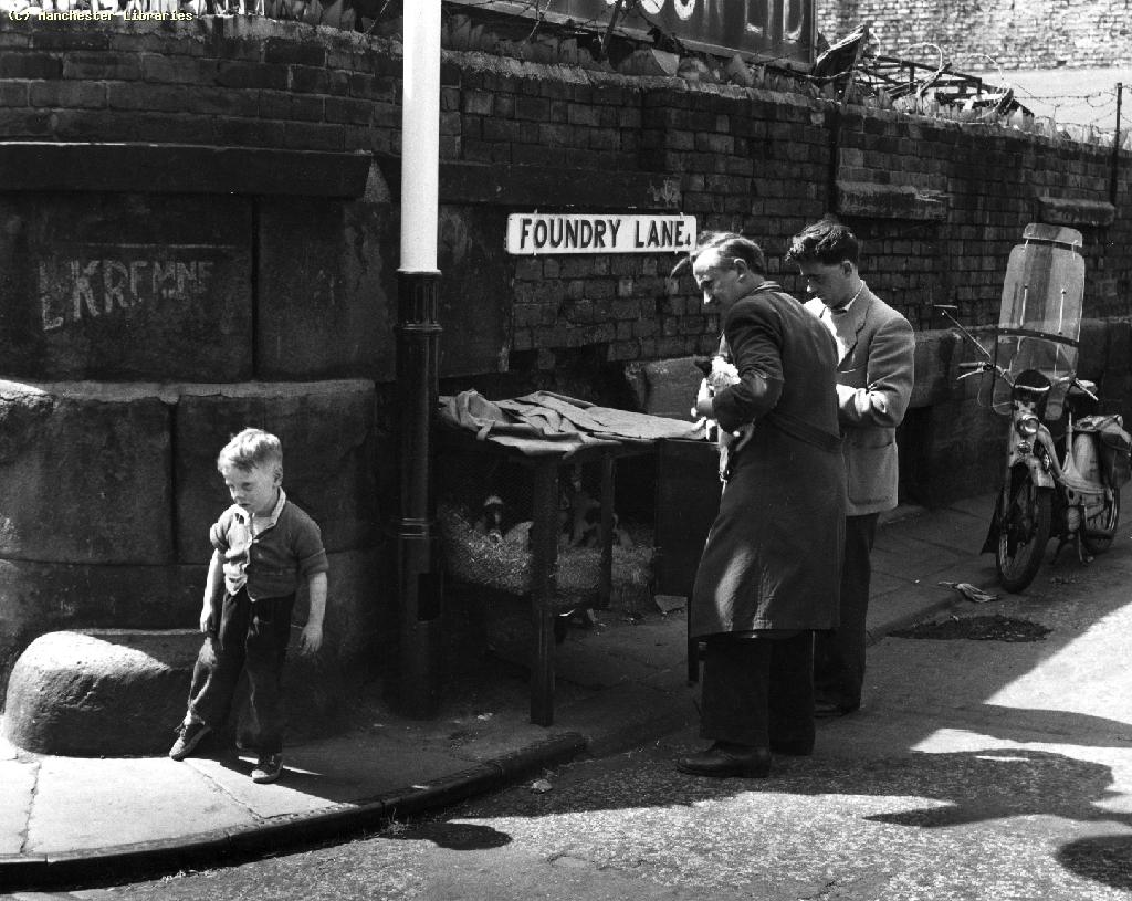 Image c/o  Manchester Libraries , dogs on the corner of Tib Street in 1959