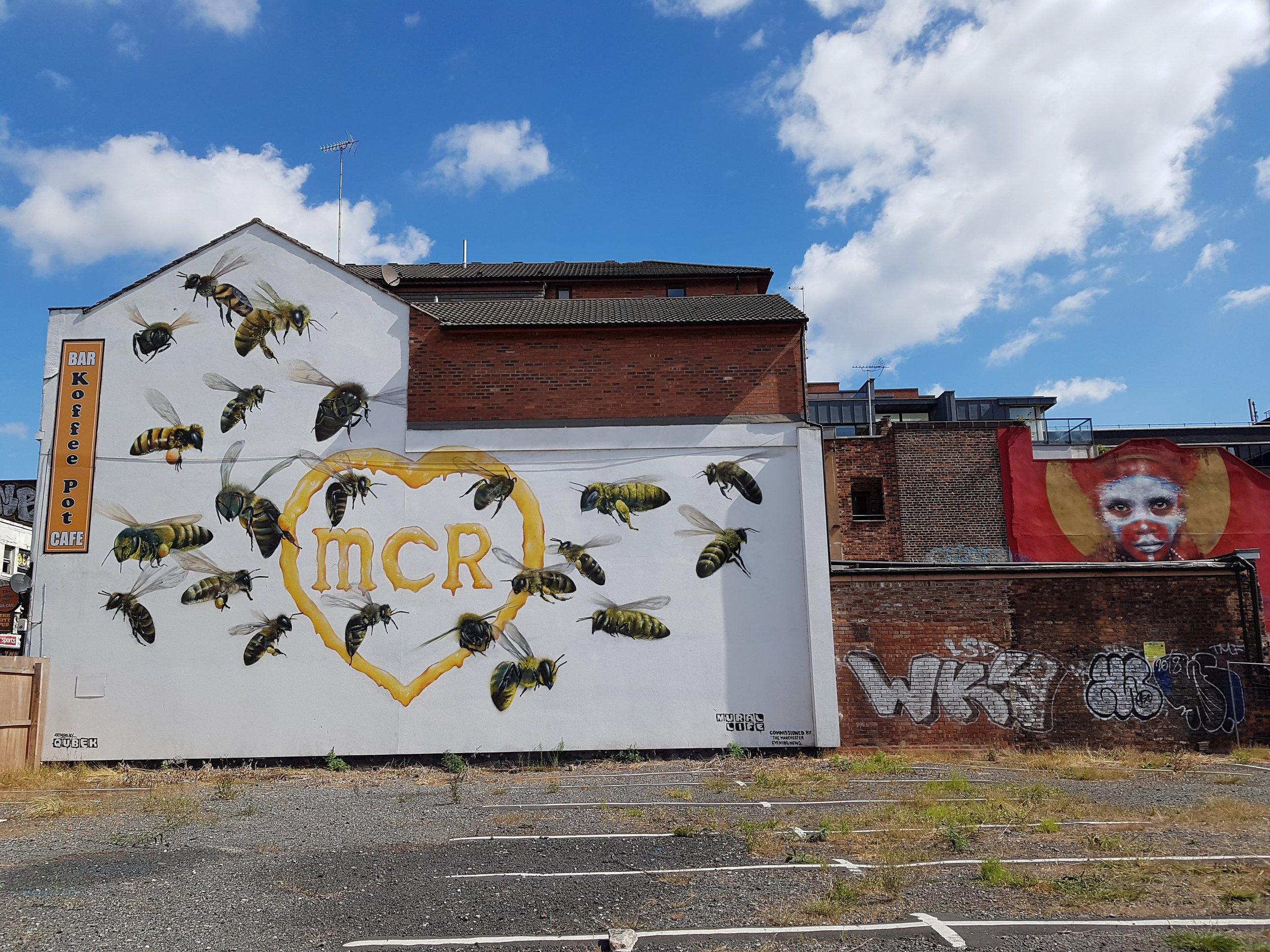 qubek dale grimshaw bees