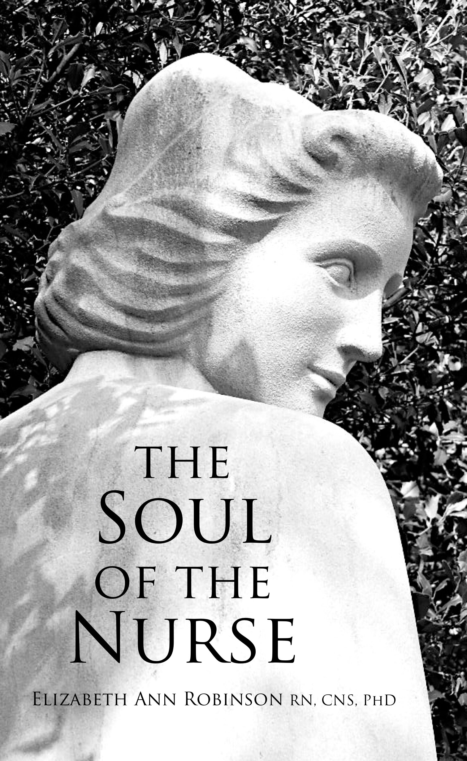 Soul of the Nurse: by Elizabeth Ann Robinson, Ph.D.