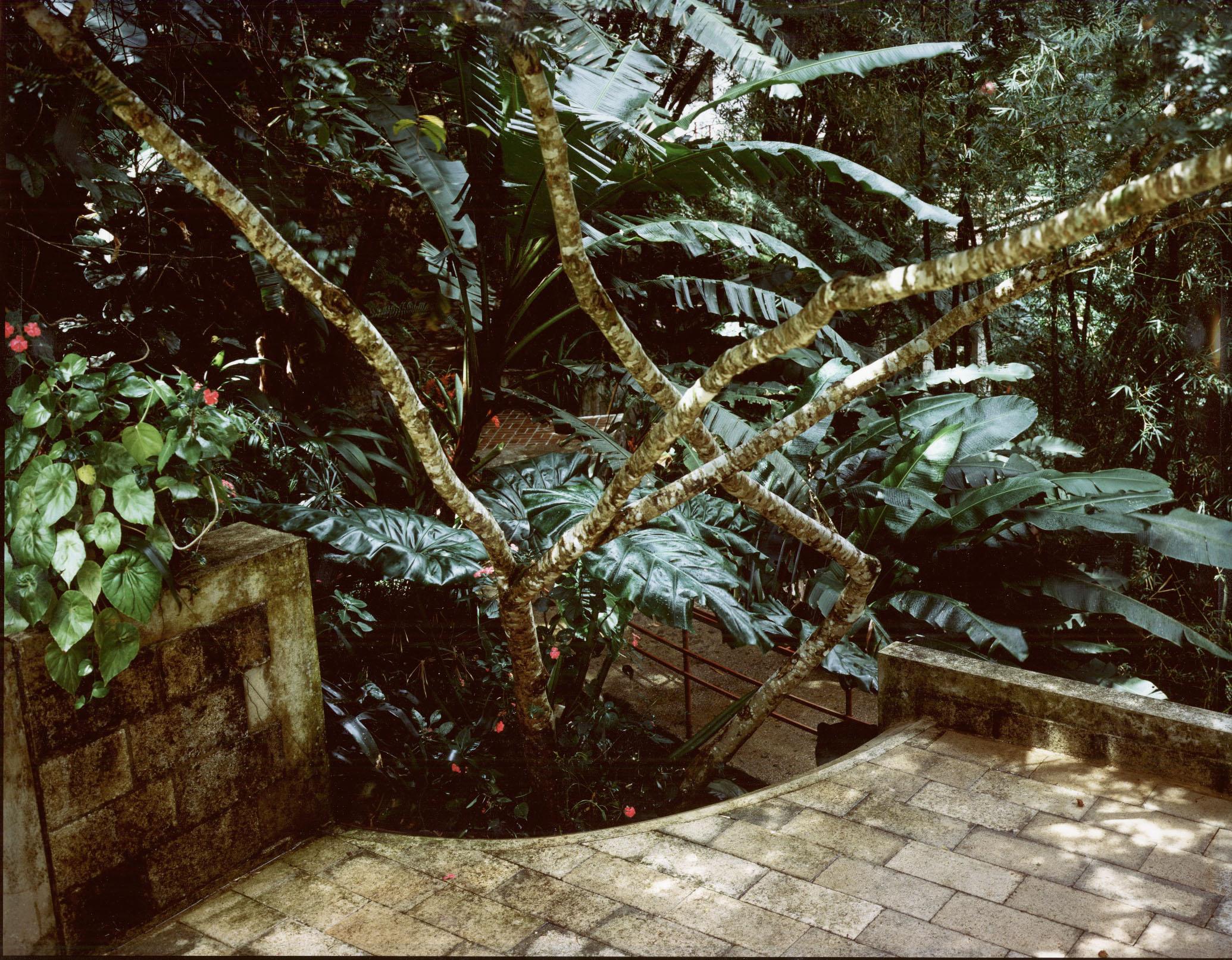 Puerto Rico (7)-EDIT.jpg