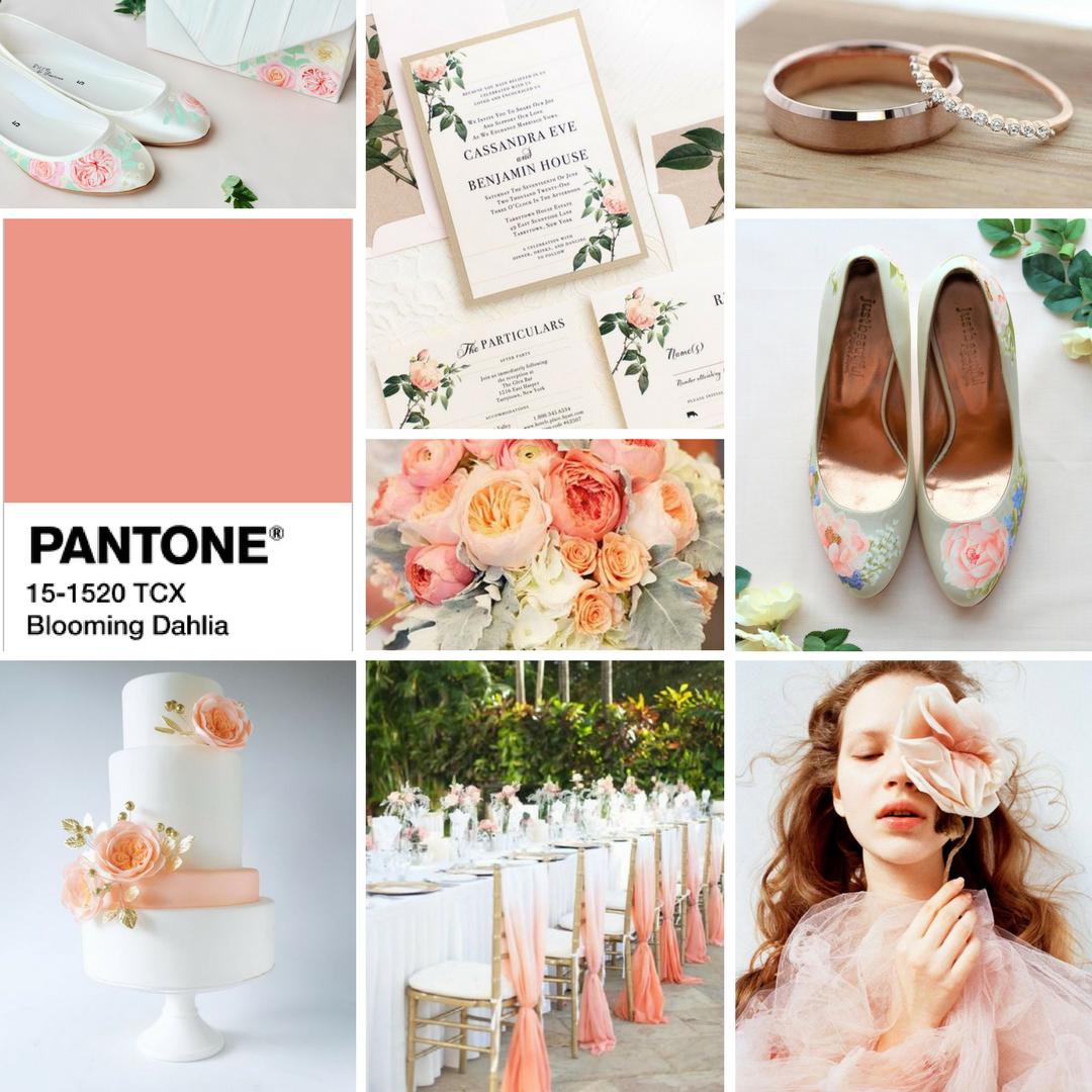 Pantone- Blooming Dahlia.png
