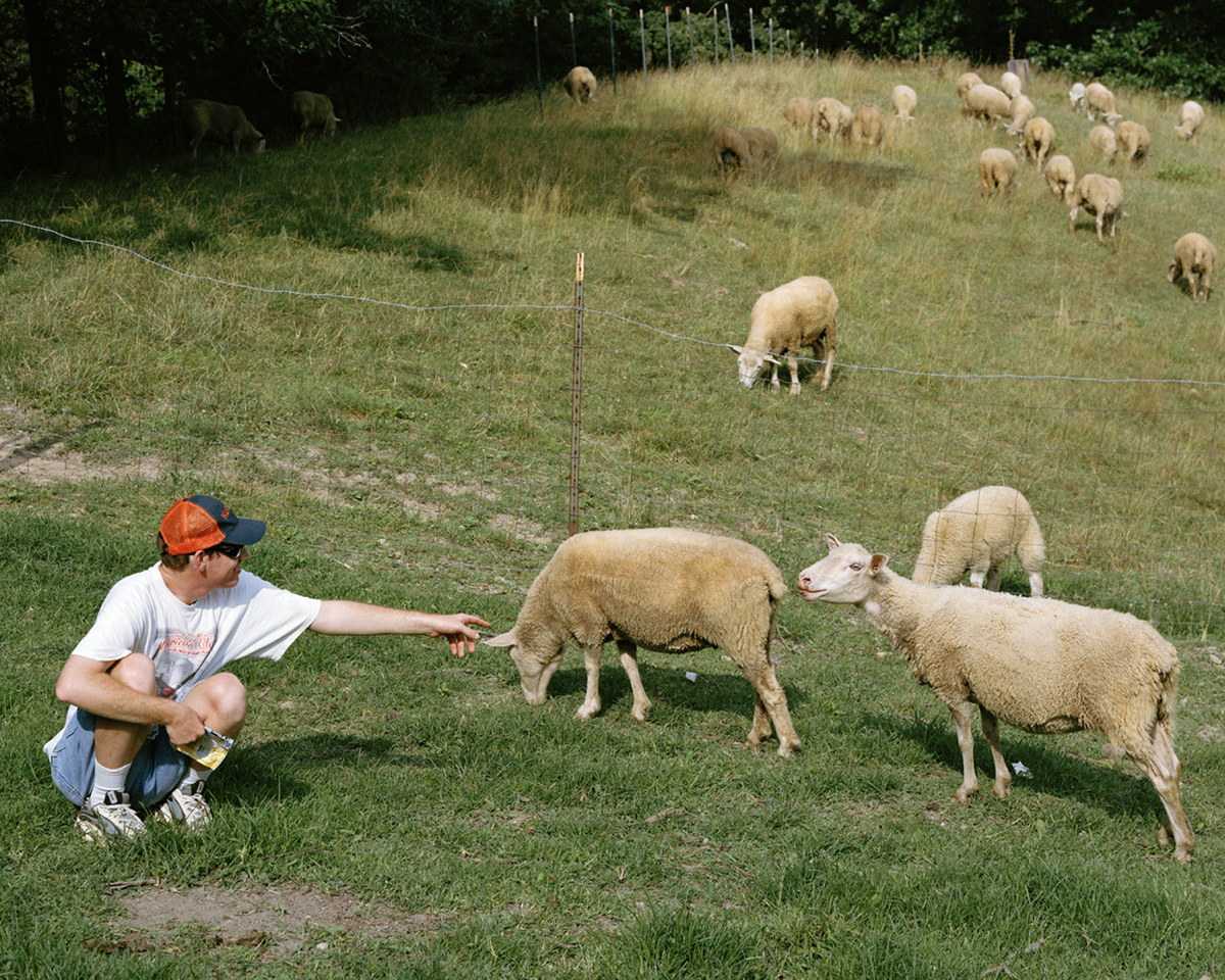James with the Sheep