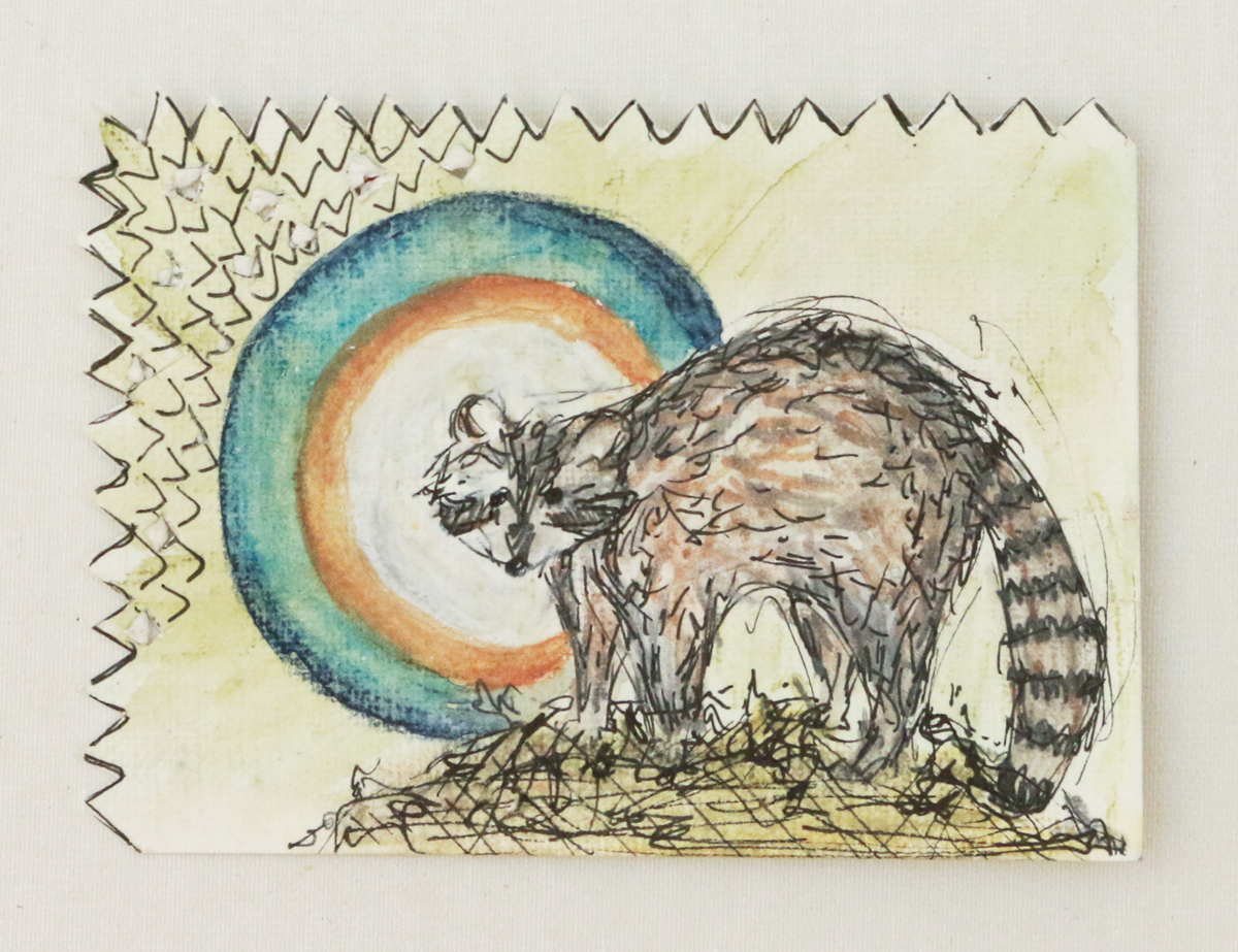 Lyme Raccoon