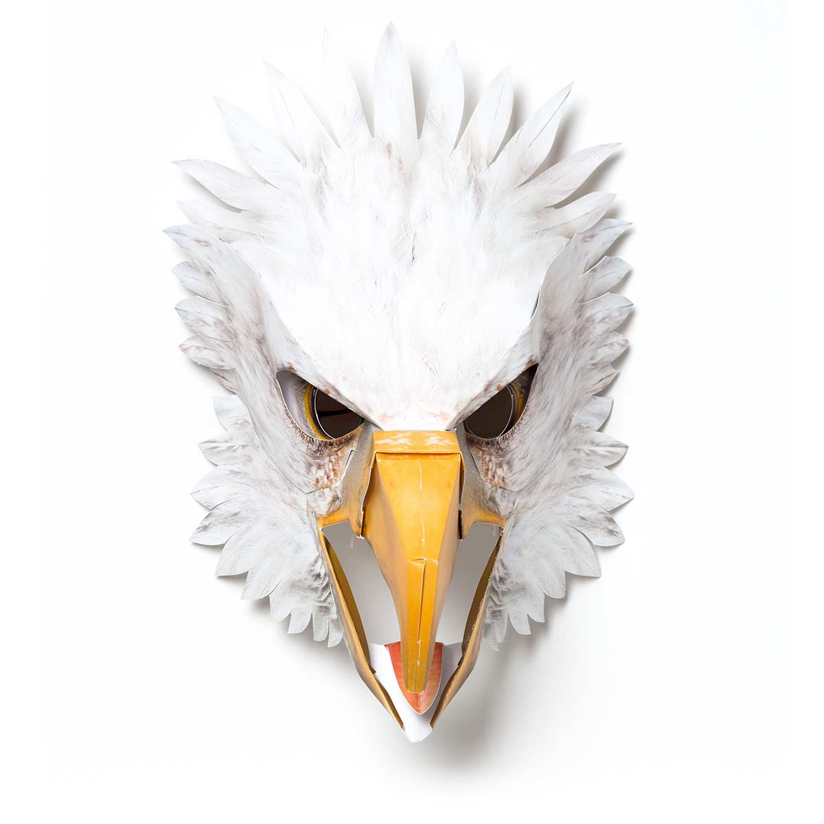 Adler, zusammengebaut, Vorderansicht