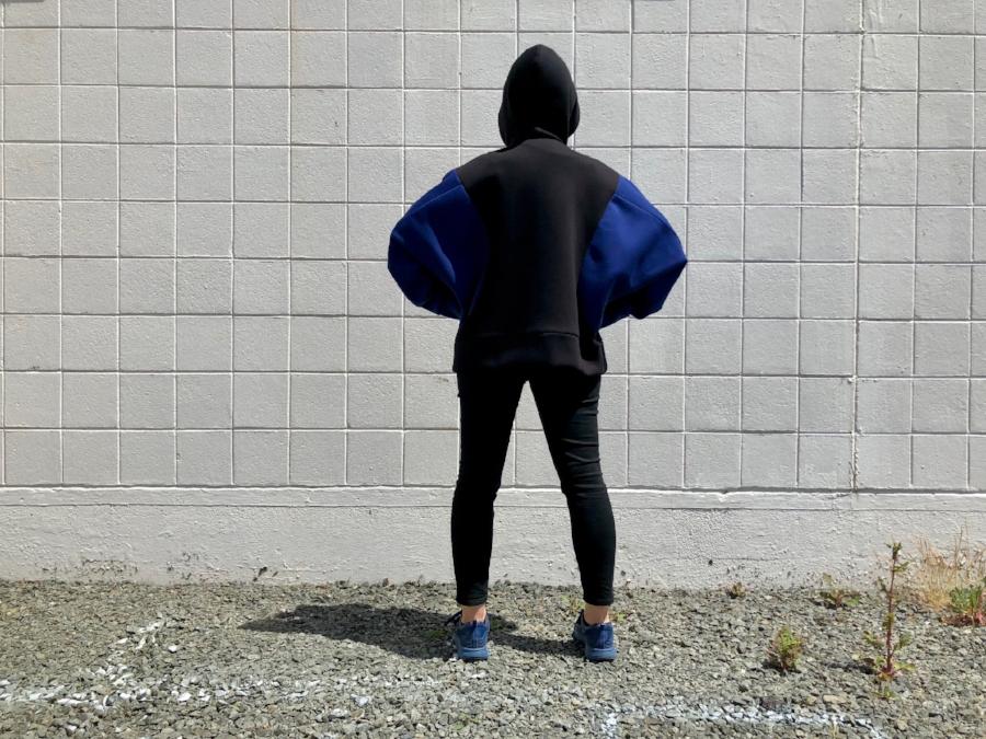 dp studio 001 hoodie