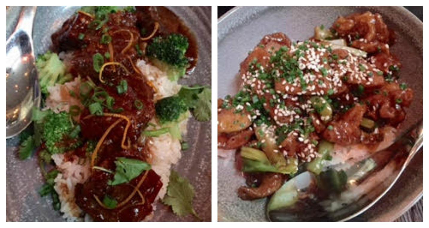 Bazi South Beach Miami Beef and Broccoli and General Tso's Chicken