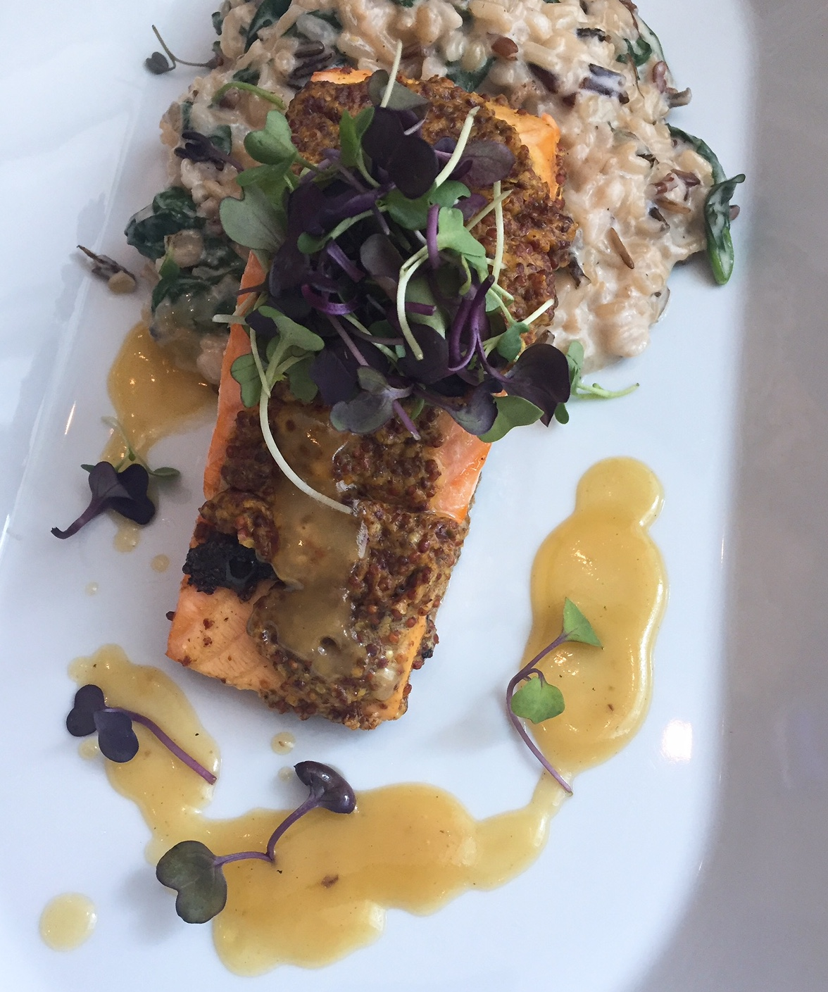 Elia Gourmet's mustard crusted salmon with mushroom risotto.