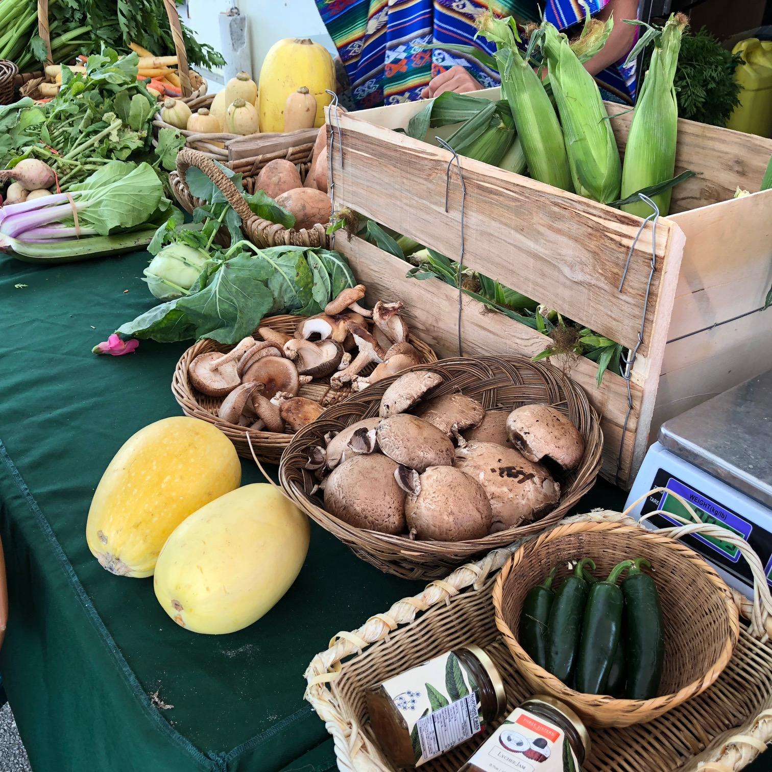Urban Oasis Project Fresh produce