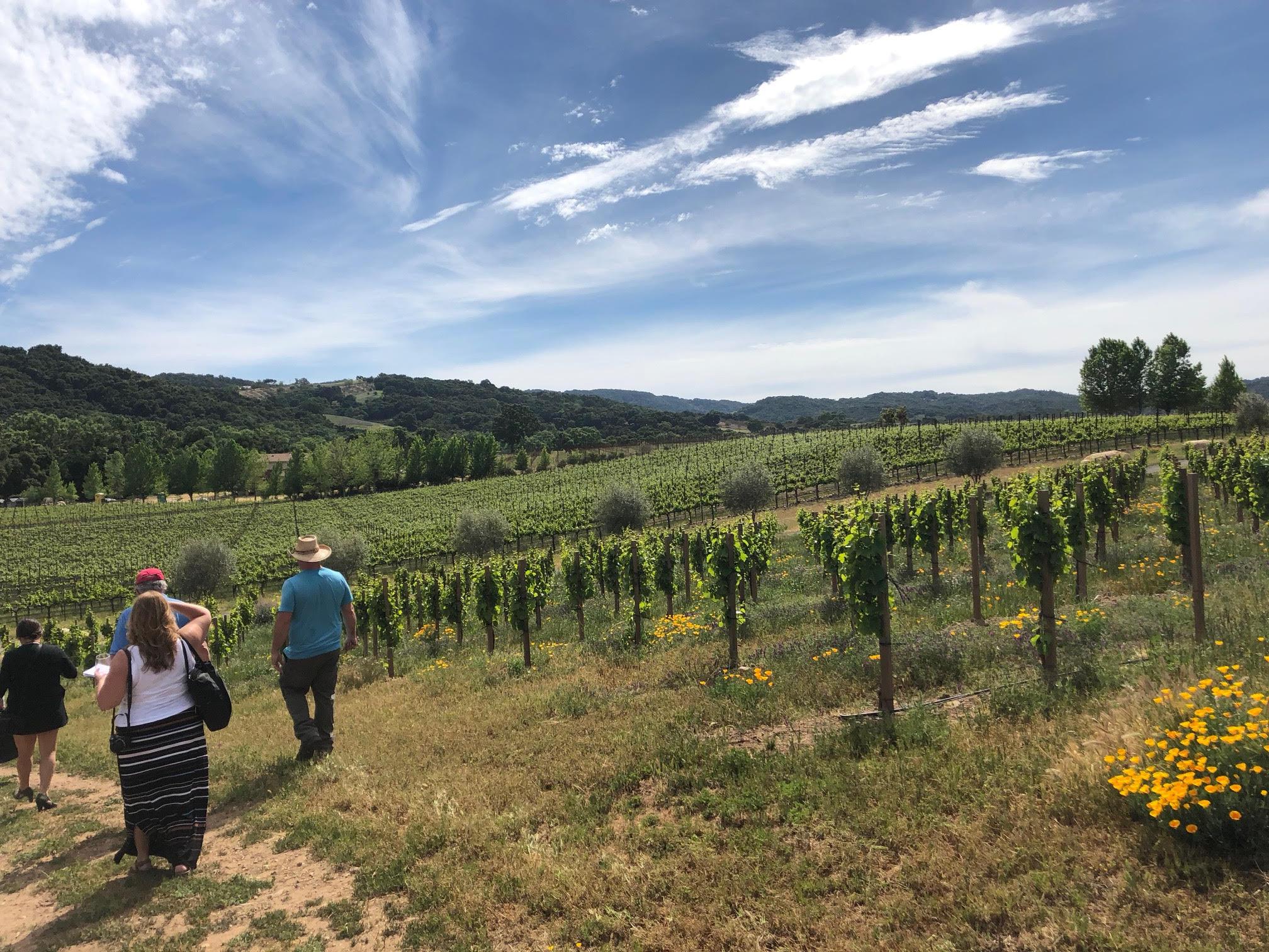 ONX Wines at Templeton Gap.jpg