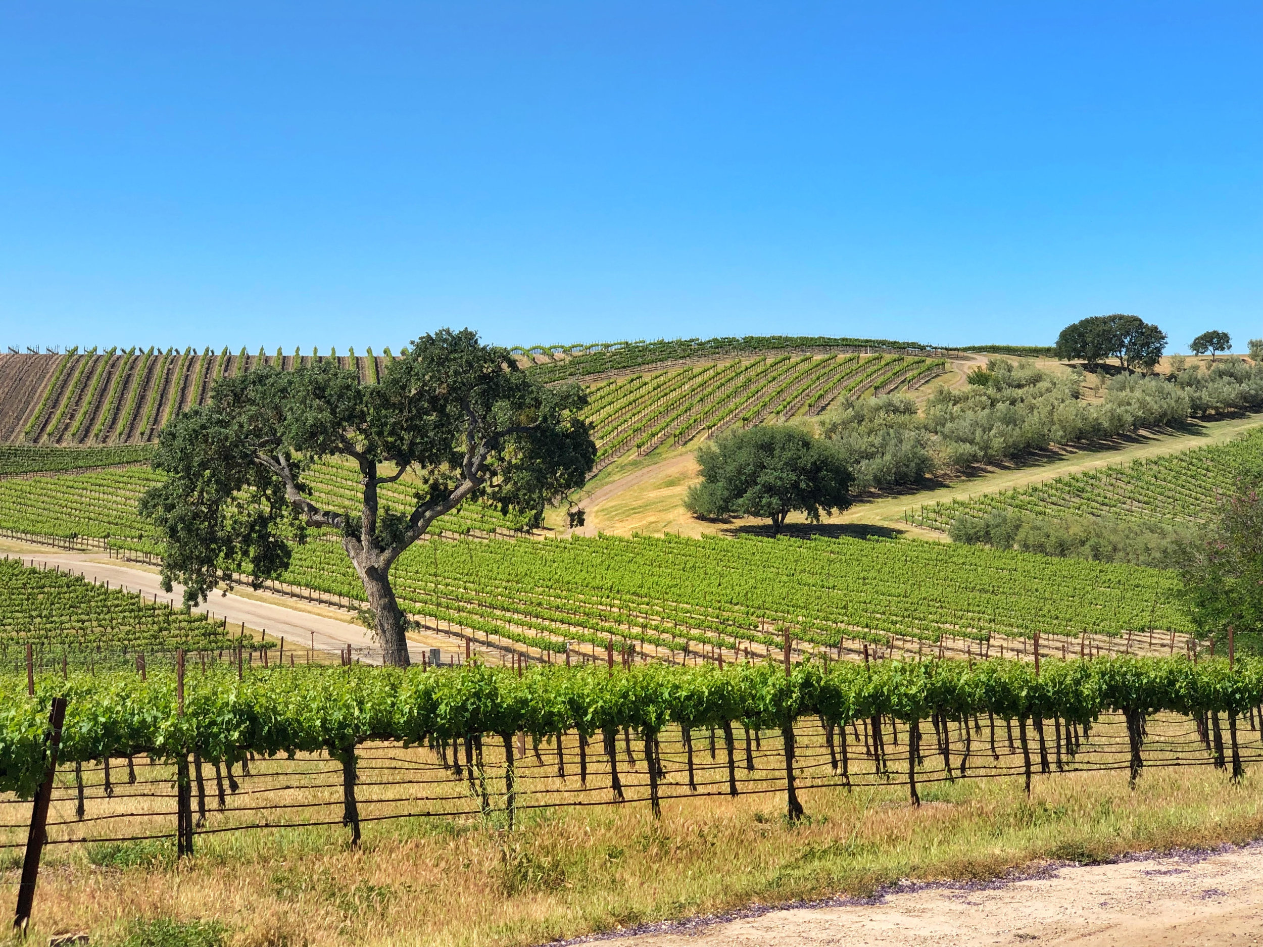 Paso Robles Pomar Junction