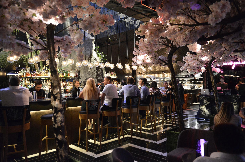 Chotto Matte Cherry Blossoms Miami