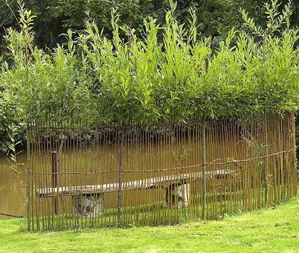WillowGarden010.jpg