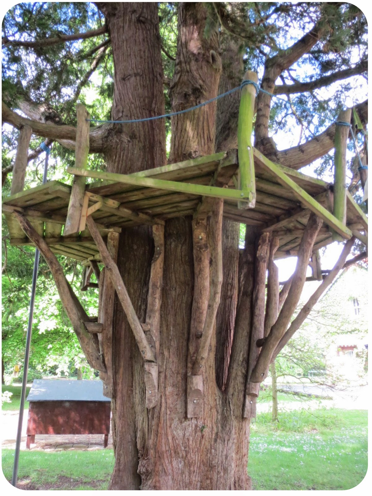 Every child should have access to a tree house