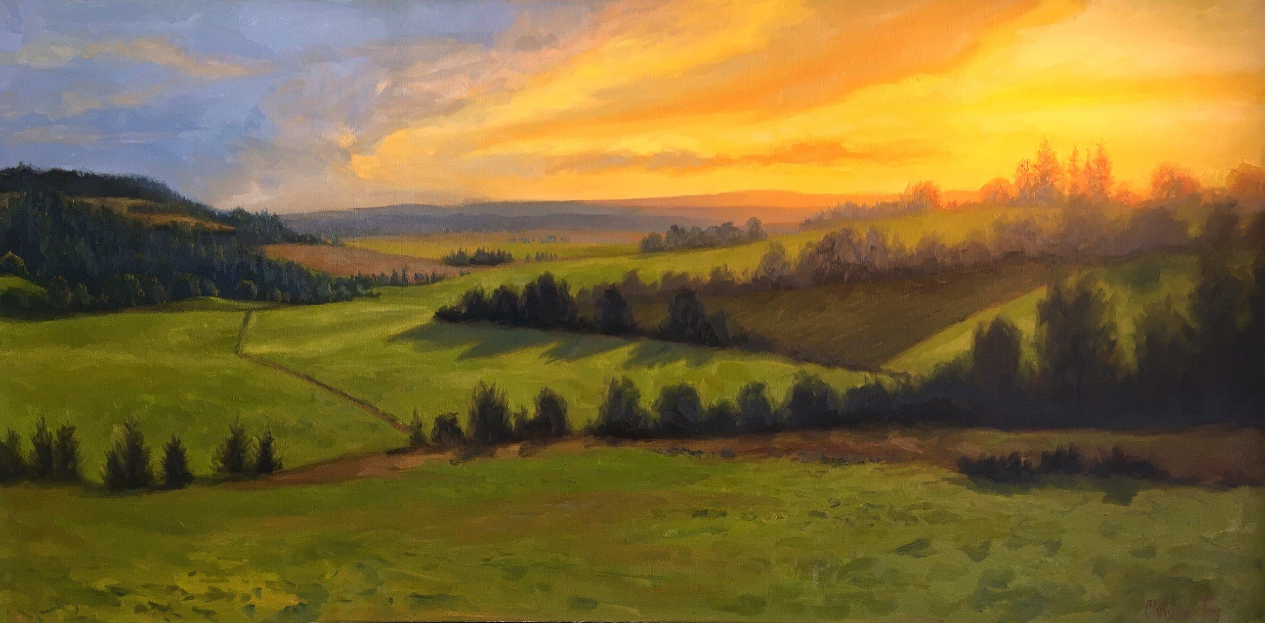 Sunset at Dukes Vineyard