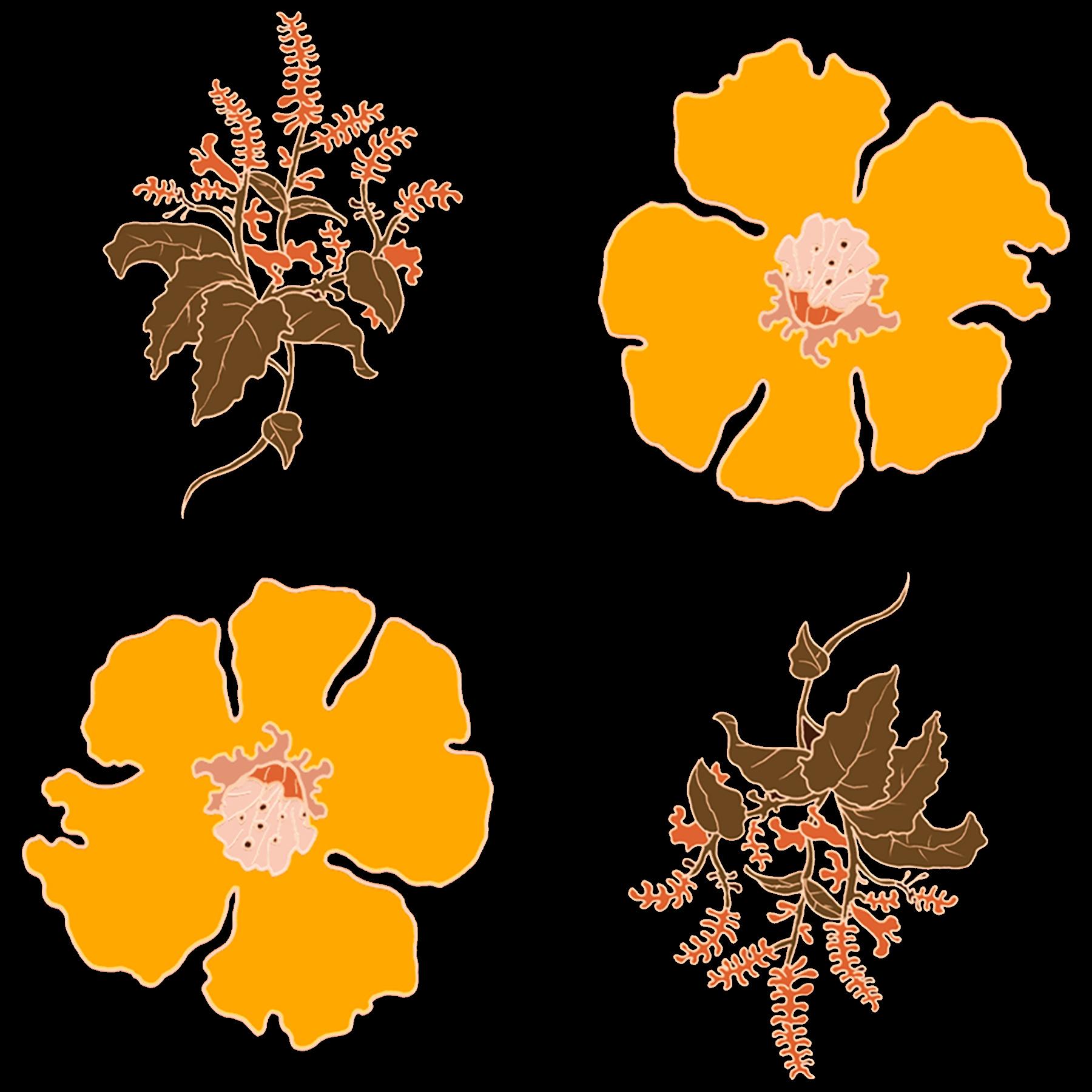 JV Floral Branch Process 3