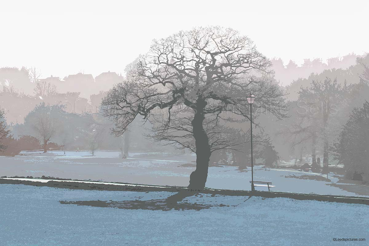 Single tree, mist, Meanwood Park   A lovely early morning,sharp frost with sun just glinting through the mist on Meanwood Park .  [This print is available in other base colours - it looks equally good in sage green, rust red, or gold / yellow!Please contact me for details ]