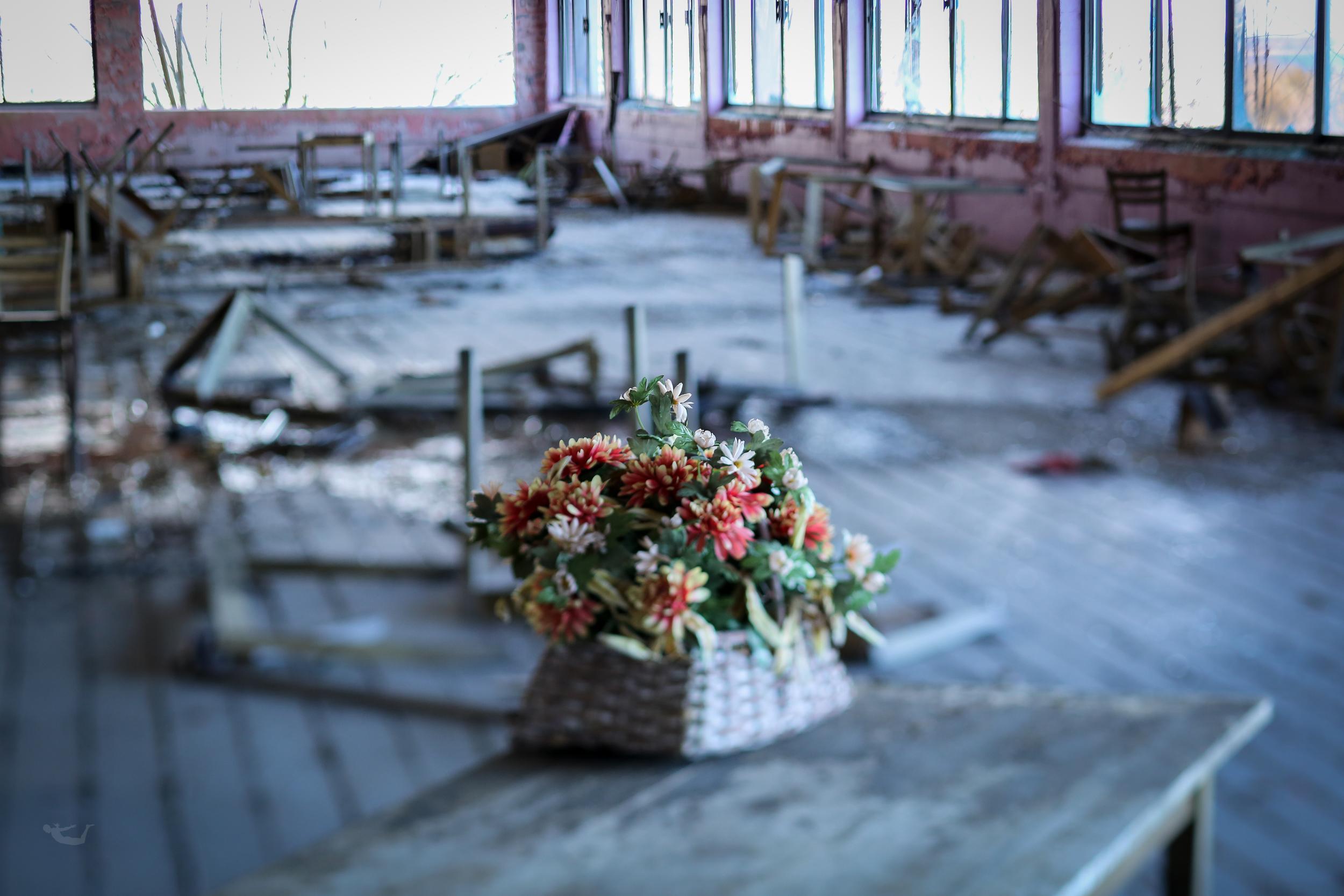 abandoned.spaces.flowers.RI.jpg