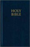 NIV Church Bible  by Zondervan  (adults)